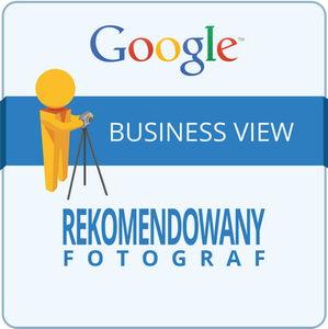 historyczne logo projektu Business View